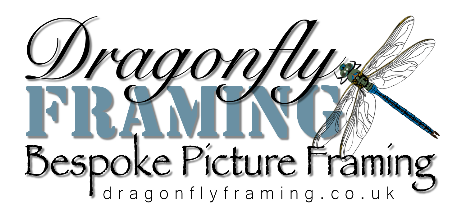 Dragonflyframing Logo